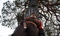 Ylpeä puukon haltija